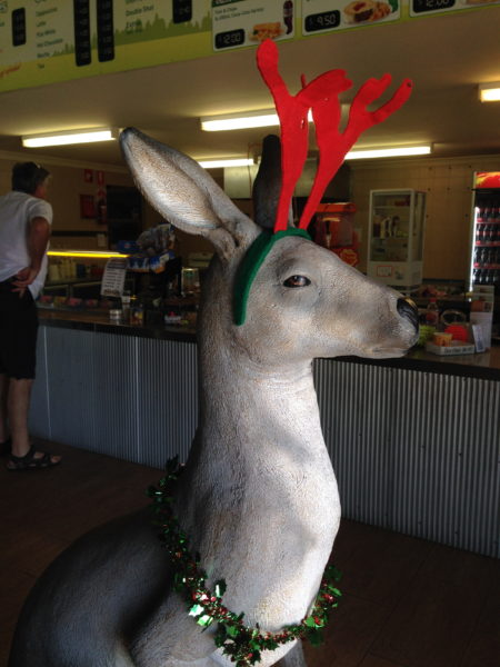 fake kangaroo with red reindeer antlers on its head and tinsel holly around its neck